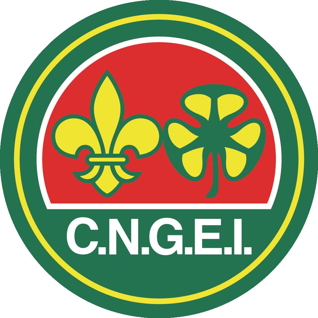 Scout CNGEI